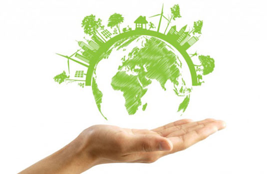 Features That Make a Home Eco-Friendly